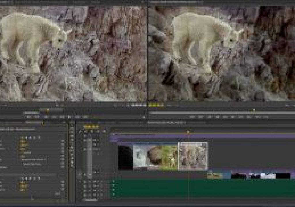 Adobe Reveals Next Wave of Innovation for Creative Cloud Video Apps at NAB 3