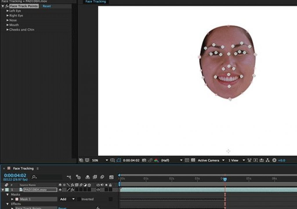 Putting Detailed Face Tracking to Work in AE CC 2015 1