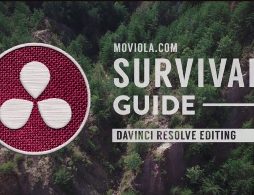 Surviving the software jungle 27