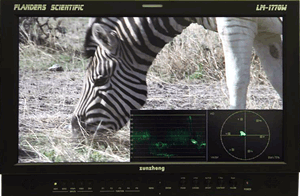 Incredible New Features for FSI Broadcast Monitors 1