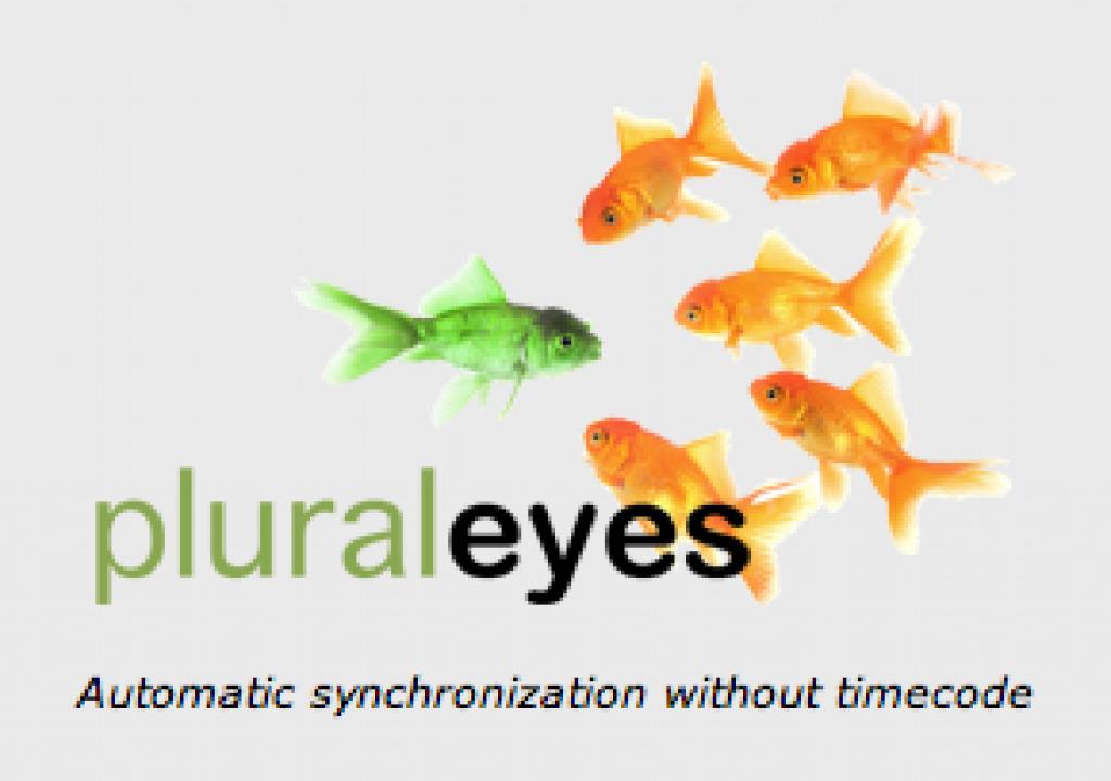 pluraleyes-logo.png