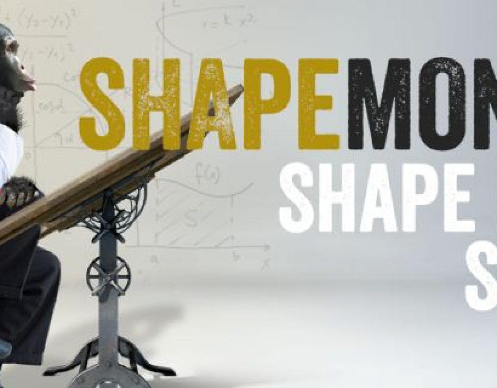 REVIEW - Shape Monkey 1