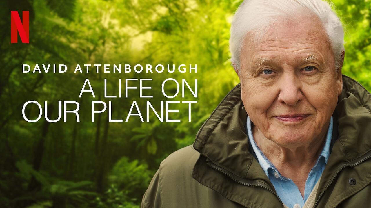 Art of the Frame David Attenborough's Cinematographer Gavin Thurston