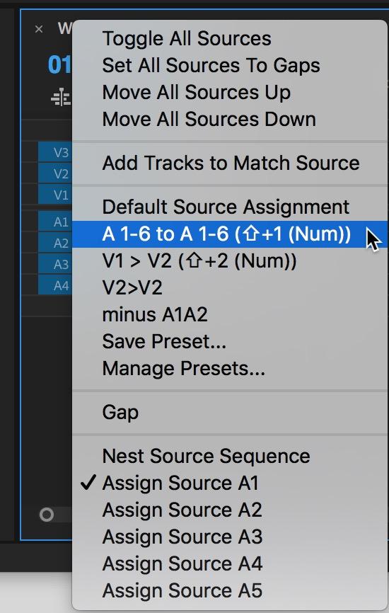 Adobe Premiere Pro source assignment
