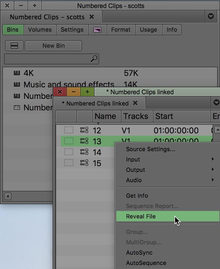 Avid Media Composer reveal file linked
