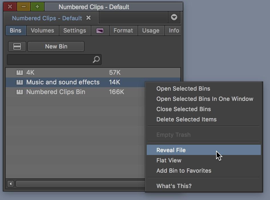 Avid Media Composer reveal file bin