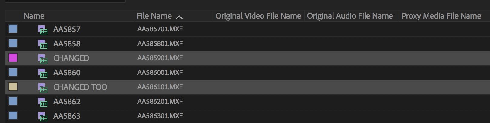 Adobe Premiere Pro name metadata