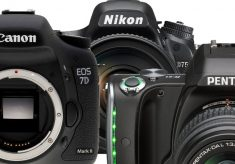 The Best Real DSLRs for Video
