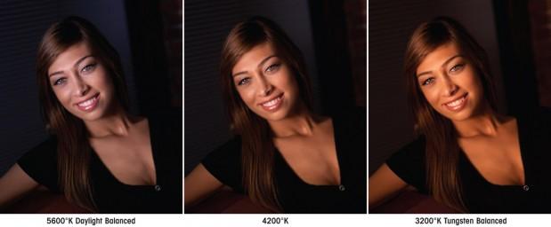 Litepanels® New 1x1 Bi-Color LED Light 3