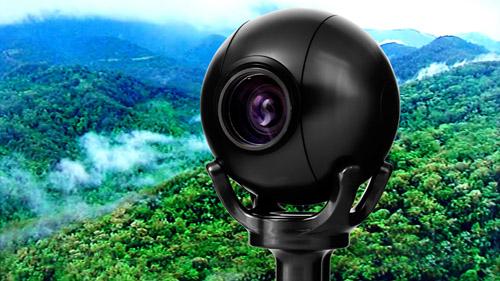 Camera Corps Q-Balls track celebrities in the Australian jungle 1