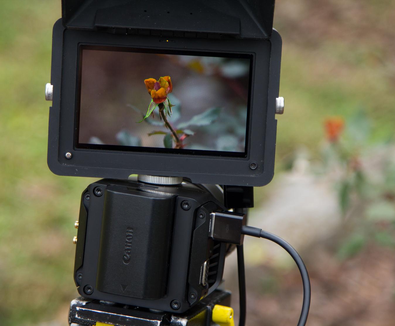 4K Micro Studio Camera 14