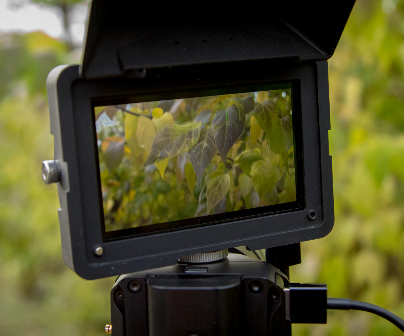 Micro Studio Camera 4K Released by Blackmagic Design 8
