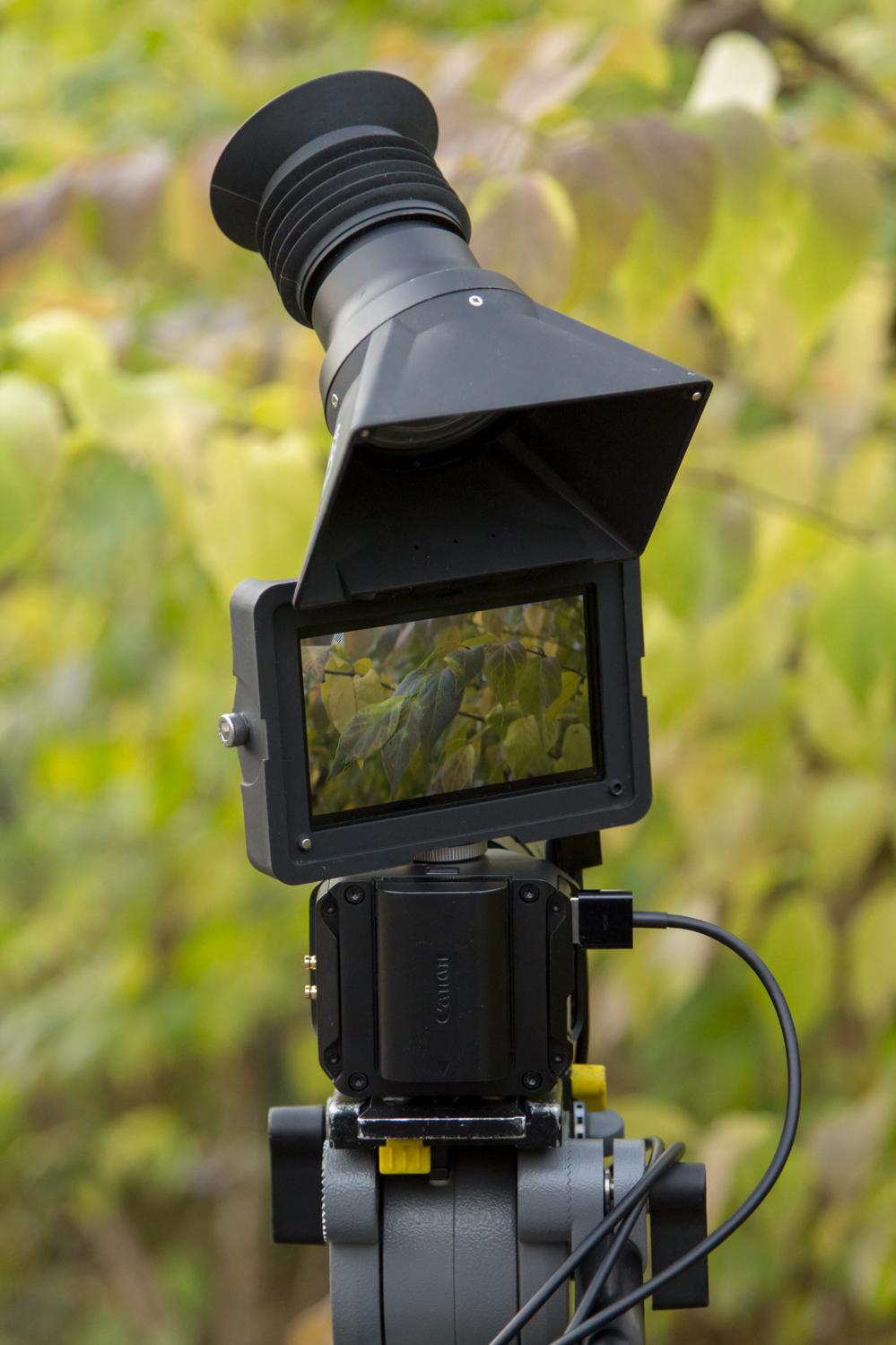 4K Micro Studio Camera 3