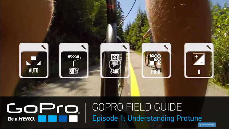 GoPro Launches New Field Guide Video Series 23