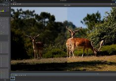 Color Grading for the Masses
