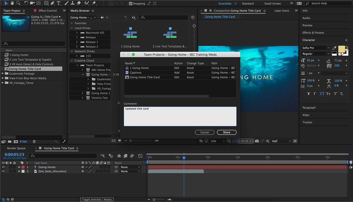 Team Projects will work with After Effects as well as Premiere Pro.