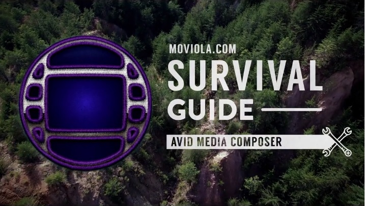 Learn AVID now (and FAST) 5