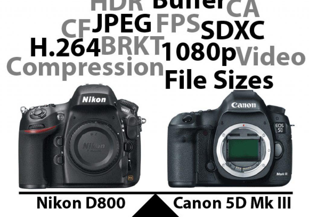 D800vs5DMkIIIgraphic1-1.jpg