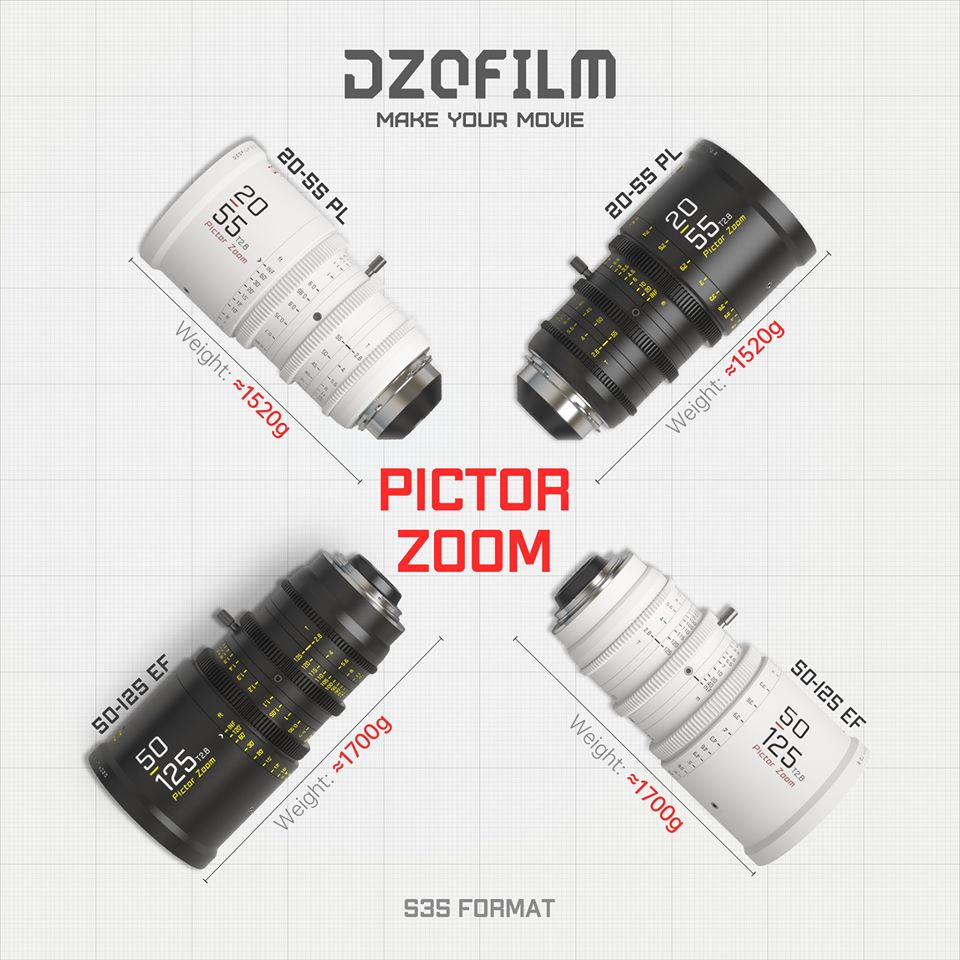 Pictor lenses