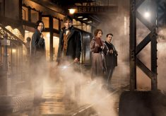 ART OF THE CUT with Mark Day of Fantastic Beasts