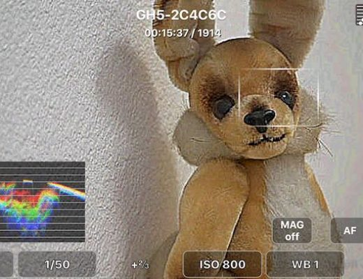 FieldMonitor 4.5: more Sonys, focus assist