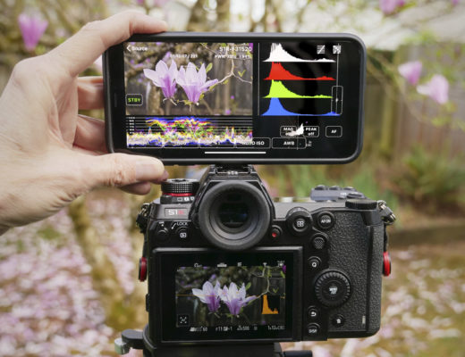 FieldMonitor working with a DC-S1R camera