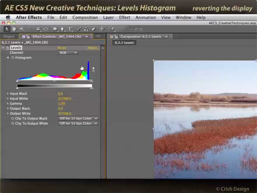 Color Histogram in After Effects Levels