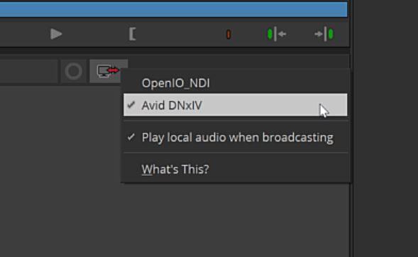 AJA Io 4K Plus Media Composer Output