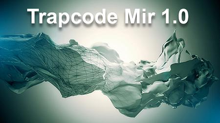 mir-450-1139462