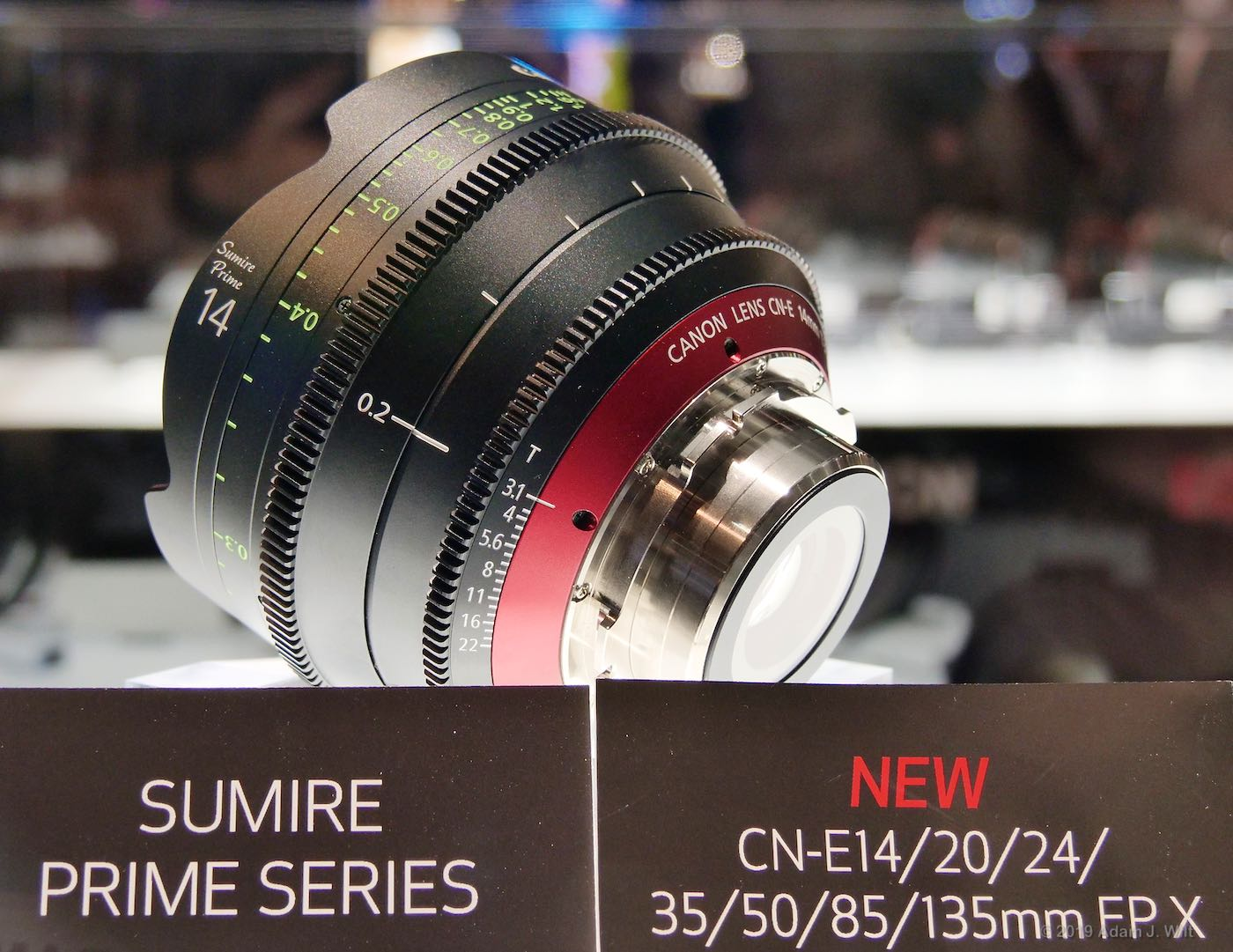 Canon Sumire (soo-me-ray) primes: PL mount, large-format, with added character wide-open
