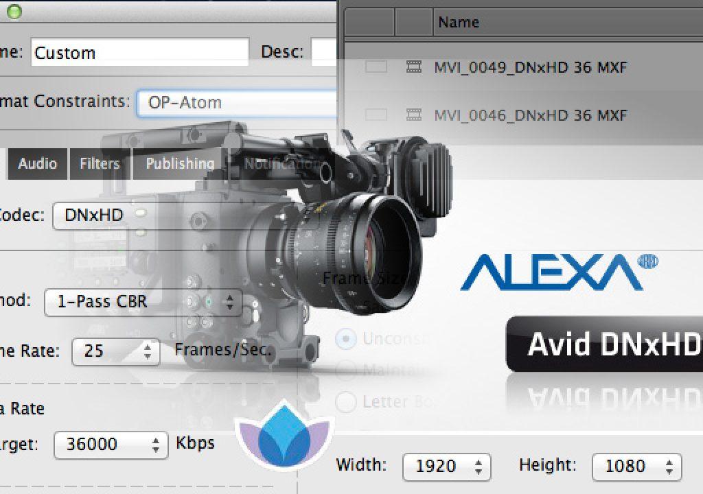 ARRI's DNxHD Alexa update, Sorenson Squeeze Pro and OP this