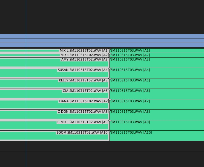 Adobe and Avid need to support iXML metadata for audio channels in the timeline 14