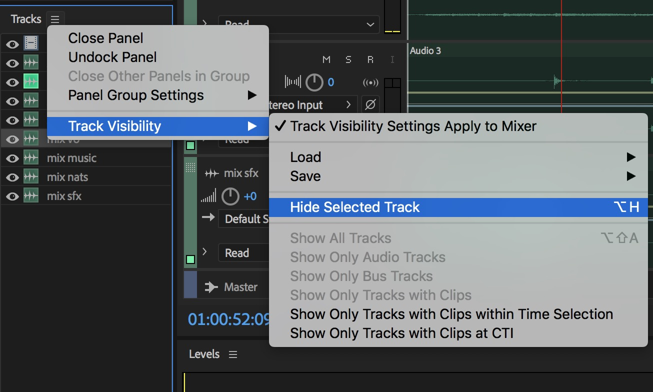 Adobe Premiere Pro Audition track panel detail