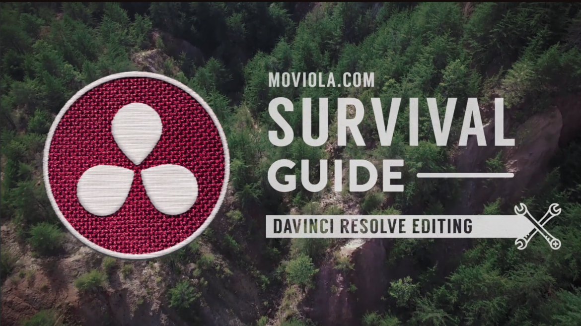 Surviving the software jungle 3