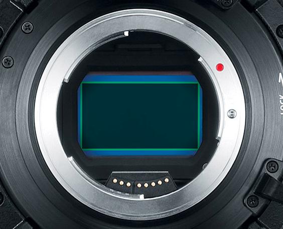 Canon C700 Ff Sensor