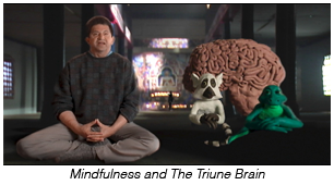 Mindfulness and The Triune Brain