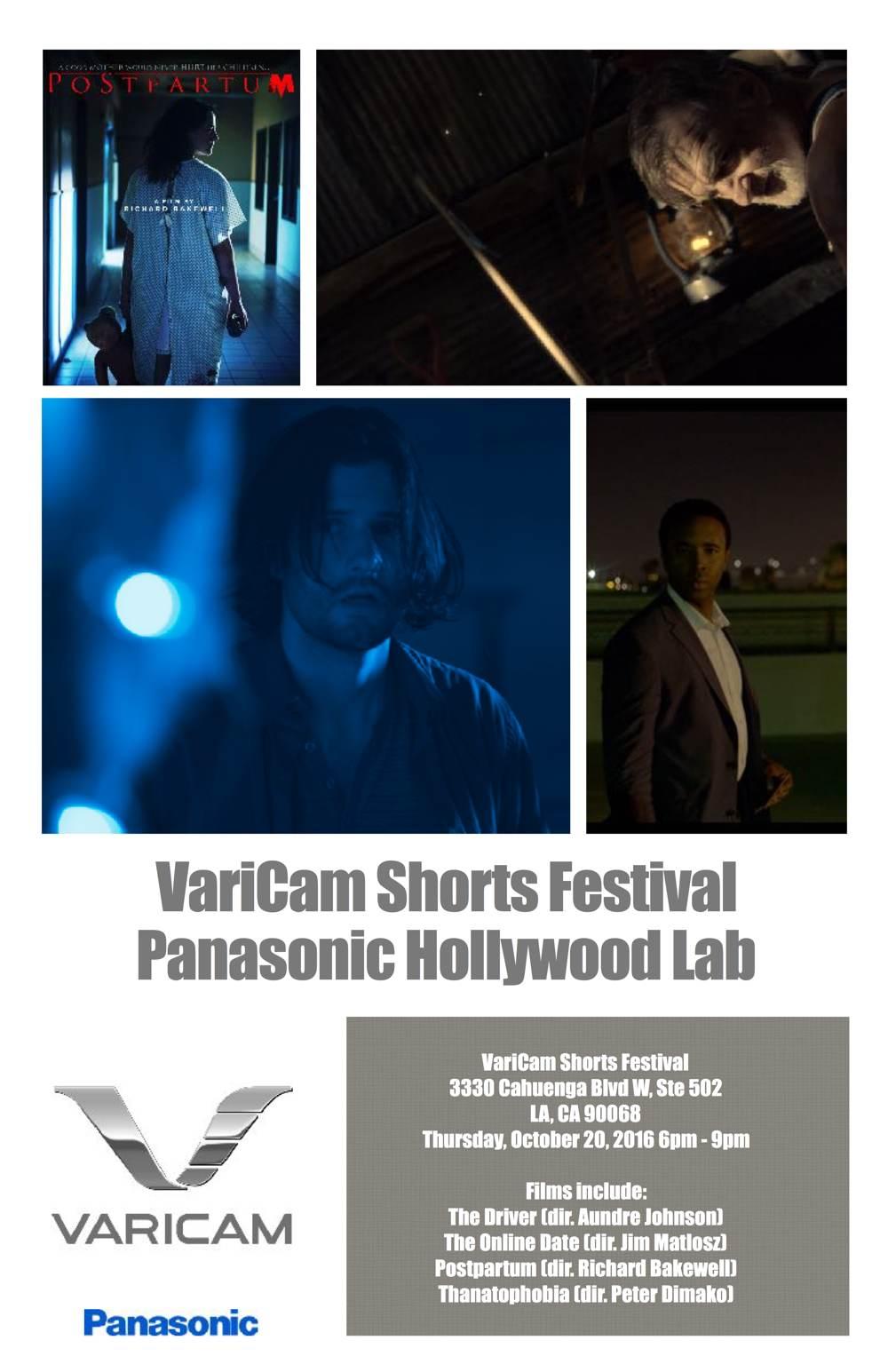 VariCam Shorts Festival poster