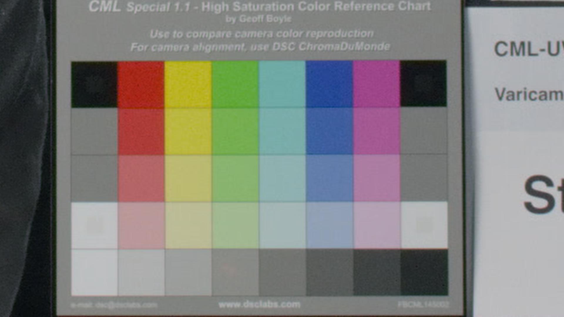 Varicam HS Daylight OS