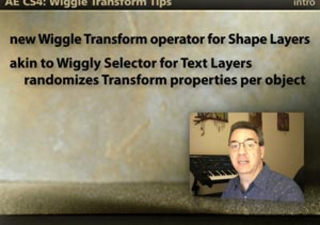 WiggleTransform_300.jpg