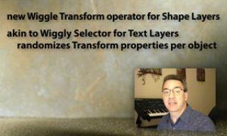 Wiggle Transform Tips