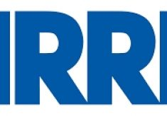 Arri Announces A New Super-Wide Anamorphic Zoom