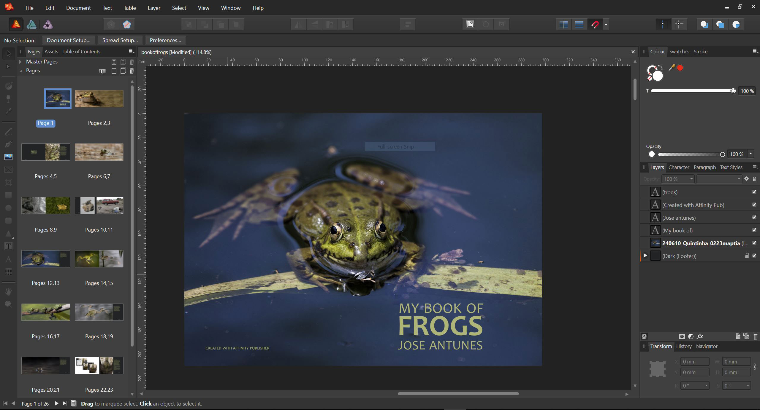 Affinity Publisher is coming: an affordable desktop publishing app 6