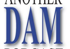 Celebrating 100 Episodes of Another DAM Podcast