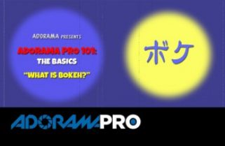 Adorama Pro 101: The Basics – What is Bokeh?