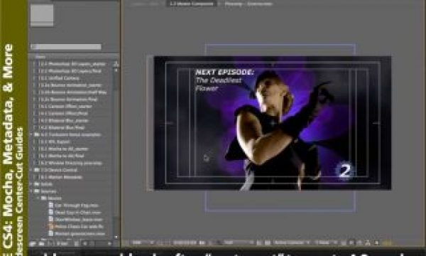 After Effects Classic Course: SD & HD Video Issues
