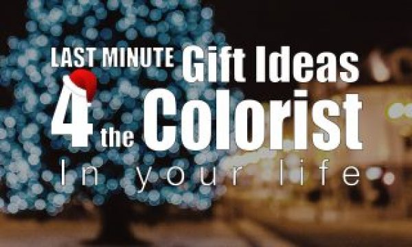 Last minute Holiday Gifts and Stocking Stuffers for the COLORIST in your life