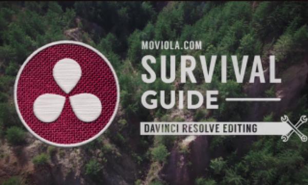 Surviving the software jungle