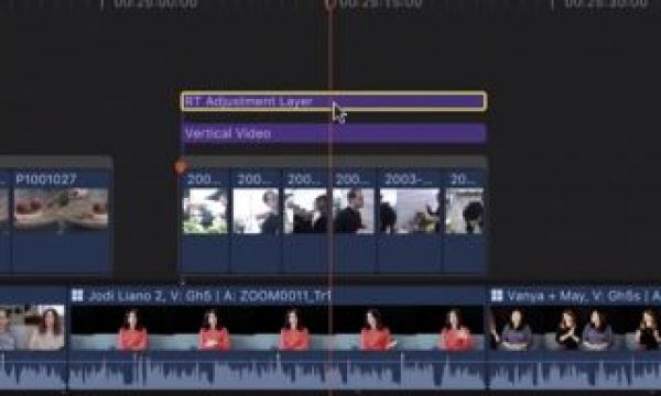 Wait you can do that with an adjustment layer? (In Final Cut Pro X)