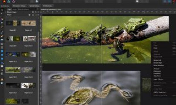 Affinity Publisher: an affordable alternative to Adobe InDesign
