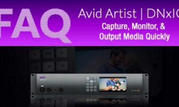 Videoguys Avid Artist | DNxIO FAQ
